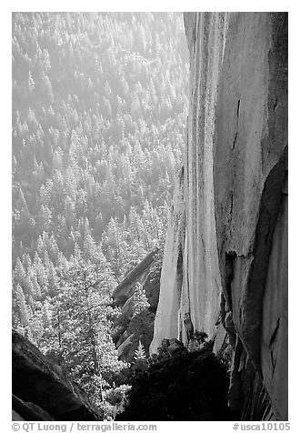 Rock wall and forest, the Needles,  Giant Sequoia National Monument. California, USA