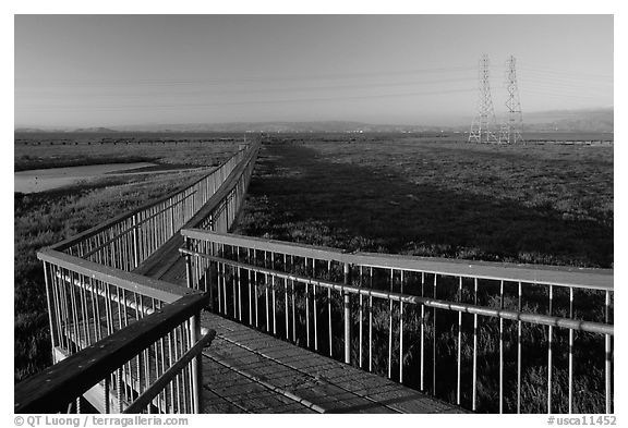 Boardwalk leading to edge of the Bay, Palo Alto Baylands. Palo Alto,  California, USA (black and white)