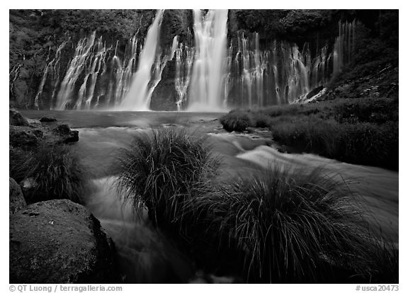 Grasses, stream and wide waterfall, Burney Falls State Park. California, USA (black and white)