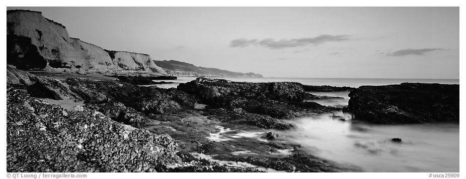 Seashore and cliffs. Point Reyes National Seashore, California, USA (black and white)