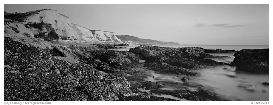 California seascape with mussels and cliffs. Point Reyes National Seashore, California, USA (black and white)
