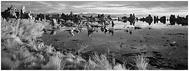 Mono Lake landscape. Mono Lake, California, USA (Panoramic black and white)