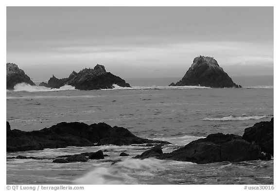 Seastacks at sunset. Point Lobos State Preserve, California, USA (black and white)