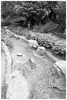 Stream, Japanese Friendship Garden. San Jose, California, USA (black and white)