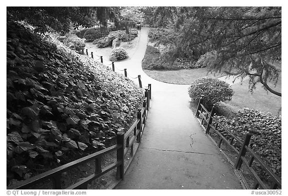 Black and white picture photo alley in japanese friendship garden san jose california usa