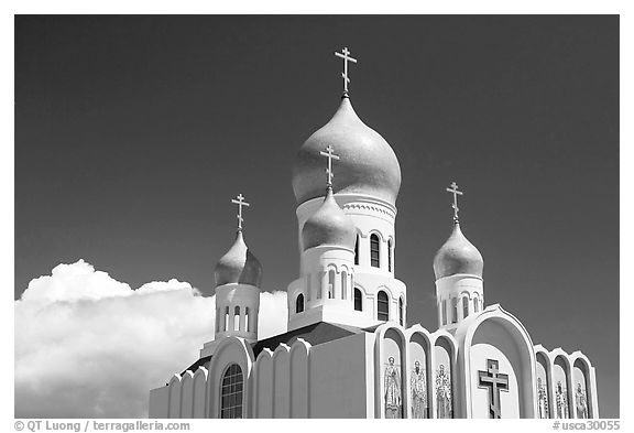 Russian Cathedral Holy Virgin. San Francisco, California, USA (black and white)