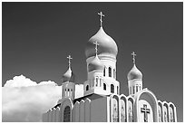 Russian Cathedral Holy Virgin. San Francisco, California, USA ( black and white)