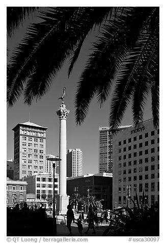 Union square and column framed by palm trees, afternoon. San Francisco, California, USA (black and white)