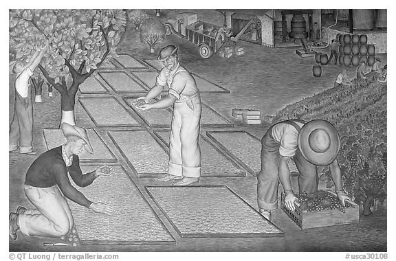 Harvest scene depicted in a fresco inside Coit Tower. San Francisco, California, USA (black and white)