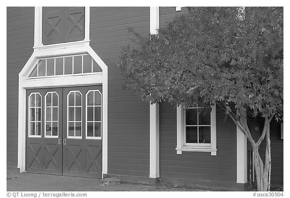 Door and tree in fall color, Red Barn. Stanford University, California, USA (black and white)