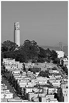 Houses on  Telegraph Hill and Coit Tower, afternoon. San Francisco, California, USA (black and white)