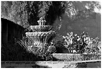 Fountain and cacti, Mission San Miguel Arcangel. California, USA (black and white)