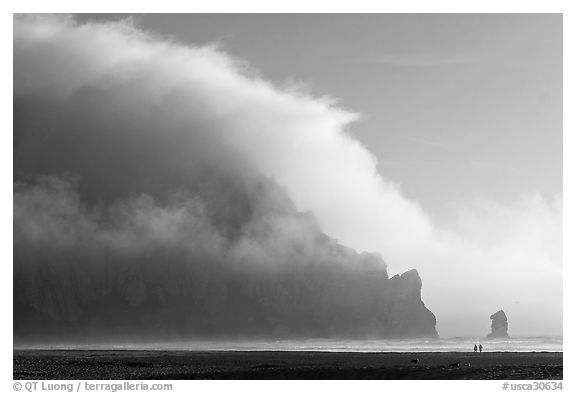 Morro Rock engulfed by afternoon fog. Morro Bay, USA (black and white)