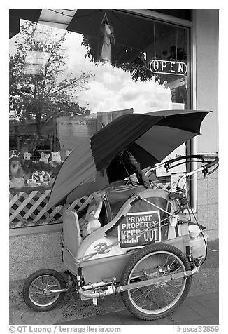 Homeless cart next to a pet store on  Santa Cruz avenue. Menlo Park,  California, USA (black and white)