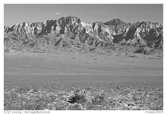 Providence Mountains. Mojave National Preserve, California, USA (black and white)