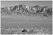 Providence Mountains. Mojave National Preserve, California, USA ( black and white)