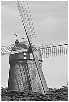 Dutch Mill. San Francisco, California, USA ( black and white)