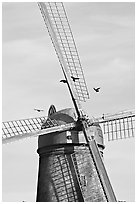 Crows and Dutch Mill. San Francisco, California, USA (black and white)