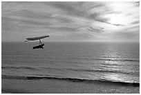 Hang gliding above the ocean at sunset,  Fort Funston. San Francisco, California, USA (black and white)