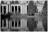 Colonades and reflection, Palace of Fine Arts, morning. San Francisco, California, USA ( black and white)