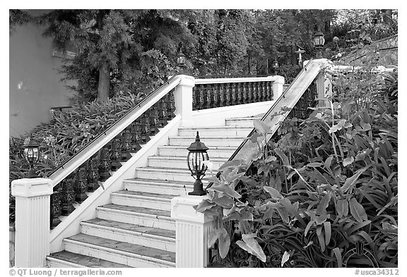 Stairs and garden, Nob Hill. San Francisco, California, USA (black and white)