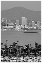 Yachts, skyline, and San Miguel Mountain, dusk. San Diego, California, USA (black and white)