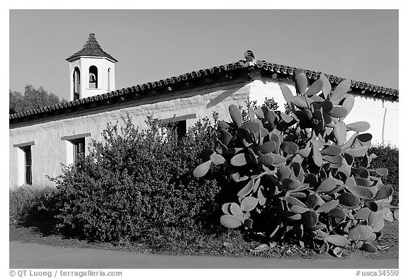 Cactus and adobe house, Old Town State Historic Park. San Diego, California, USA (black and white)