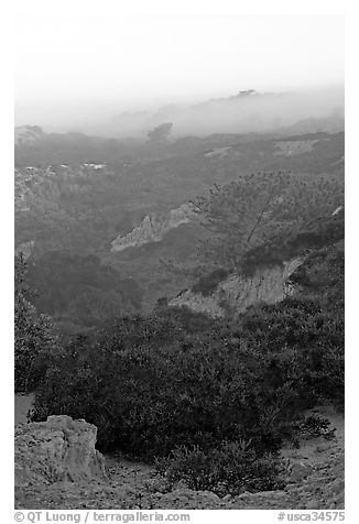 Ridges and fog and sunrise,  Torrey Pines State Preserve. La Jolla, San Diego, California, USA (black and white)