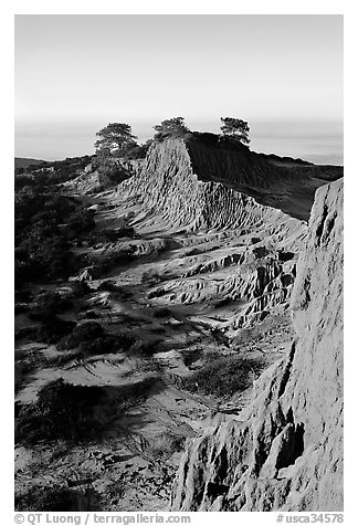 Steep weathered sandstone cliffs, Torrey Pines State Preserve. La Jolla, San Diego, California, USA (black and white)