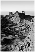 Steep weathered sandstone cliffs, Torrey Pines State Preserve. La Jolla, San Diego, California, USA ( black and white)