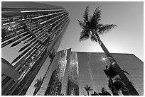 Bell tower and sun shining through the Crystal Cathedral Facade,. Garden Grove, Orange County, California, USA ( black and white)