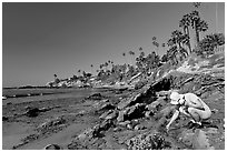 Women checking out a tidepool. Laguna Beach, Orange County, California, USA ( black and white)
