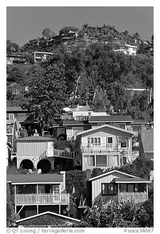 Houses on verdant hillside. Laguna Beach, Orange County, California, USA (black and white)