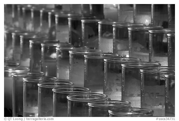 Rows of candles, sharp. San Juan Capistrano, Orange County, California, USA (black and white)