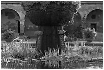 Moorish-style fountain and  courtyard arches. San Juan Capistrano, Orange County, California, USA (black and white)