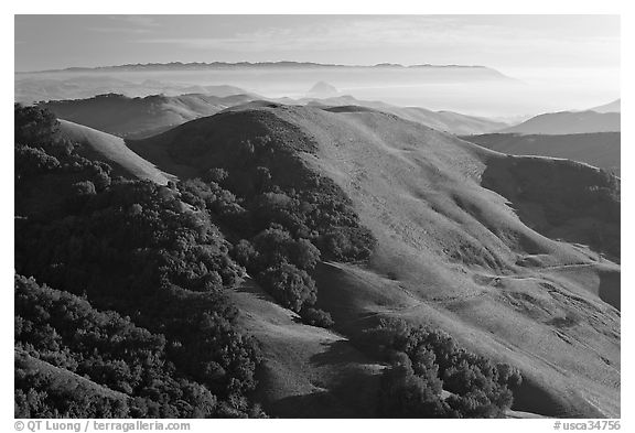 Green hills, with cost in the distance. Morro Bay, USA (black and white)