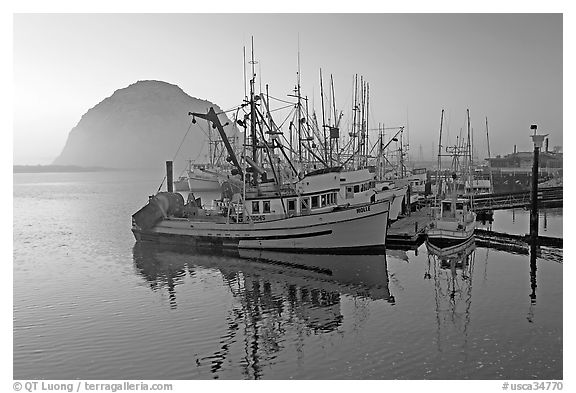 Fishing fleet and Morro Rock, sunset. Morro Bay, USA (black and white)