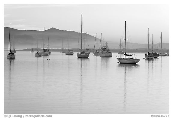 Yachts reflected in calm  Morro Bay harbor, sunset. Morro Bay, USA (black and white)