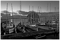 Fishing boats at dusk. Morro Bay, USA (black and white)