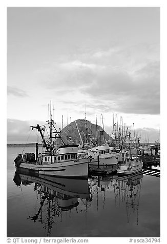 Fishing fleet and Morro Rock, sunrise. Morro Bay, USA (black and white)