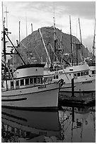 Fishing boats and Morro Rock, sunrise. Morro Bay, USA (black and white)