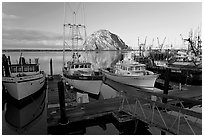 Harbor and Morro Rock, early morning. Morro Bay, USA (black and white)
