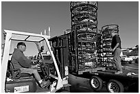 Men loading crab traps onto a truck. Morro Bay, USA (black and white)