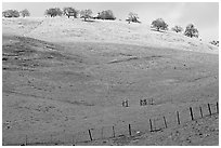 Hills with top covered with fresh snow, Mount Hamilton Range foothills. San Jose, California, USA (black and white)
