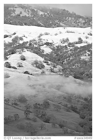 Green hills partly covered with snow, Mount Hamilton Range. San Jose, California, USA (black and white)