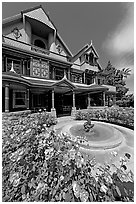 Roses and facade. Winchester Mystery House, San Jose, California, USA (black and white)