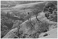Couple sitting on hillside in early spring, Sunol Regional Park. California, USA (black and white)