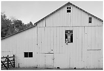 Barn with figures in window and cats, Happy Hollow Farm, Rancho San Antonio Park, Los Altos. California, USA (black and white)