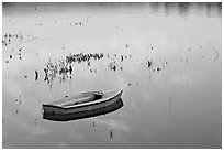 Rowboat in Lake Lagunata. Stanford University, California, USA (black and white)