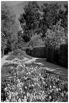 Alley with flowers, Allied Arts Guild. Menlo Park,  California, USA (black and white)